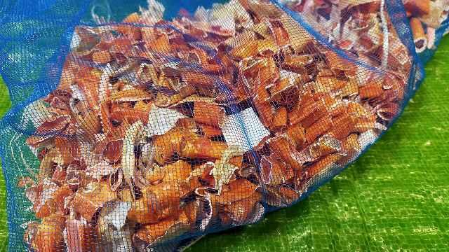 カニ殻と酢でキチン質酢液の作りで乾燥後のカニ殻