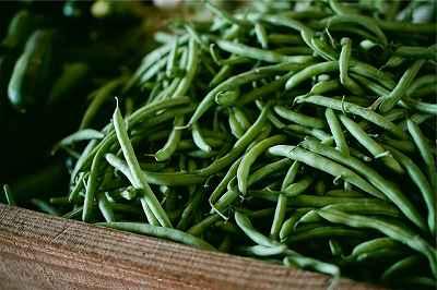 5月に植える野菜のインゲン