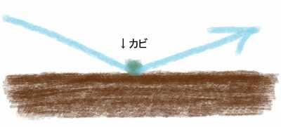 しいたけ栽培キットの青カビの落とし方